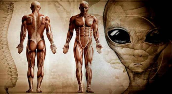 Δρ Silver: Η Ανθρωπότητα έχει Εξελιχθεί σε έναν άλλο Πλανήτη