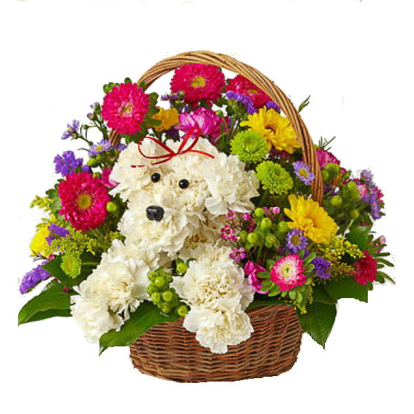 Birthday Flowers Png Hd Transparent Birthday Flowers Hdpng Images