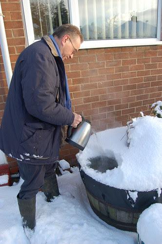 Sunniside snow Jan 10 no 3