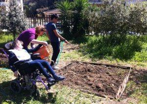 moça em cadeira de rodas, com apoio, rega uma horta.