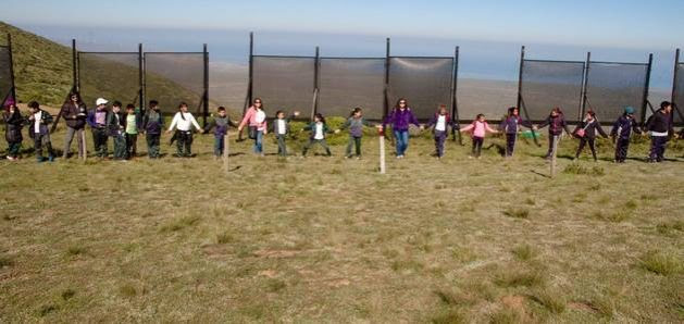 Hundreds of children, many from rural schools in the Coquimbo region, have visited the fog catchers in Cerro Grande as part of an educational programme to raise awareness among future generations about the importance of rational use of water in Chile. Credit: Foundation un Alto en el Desierto