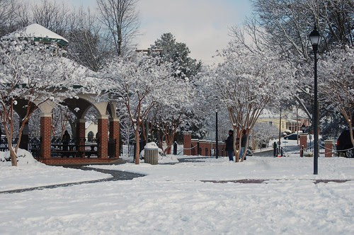 Cambridge Park