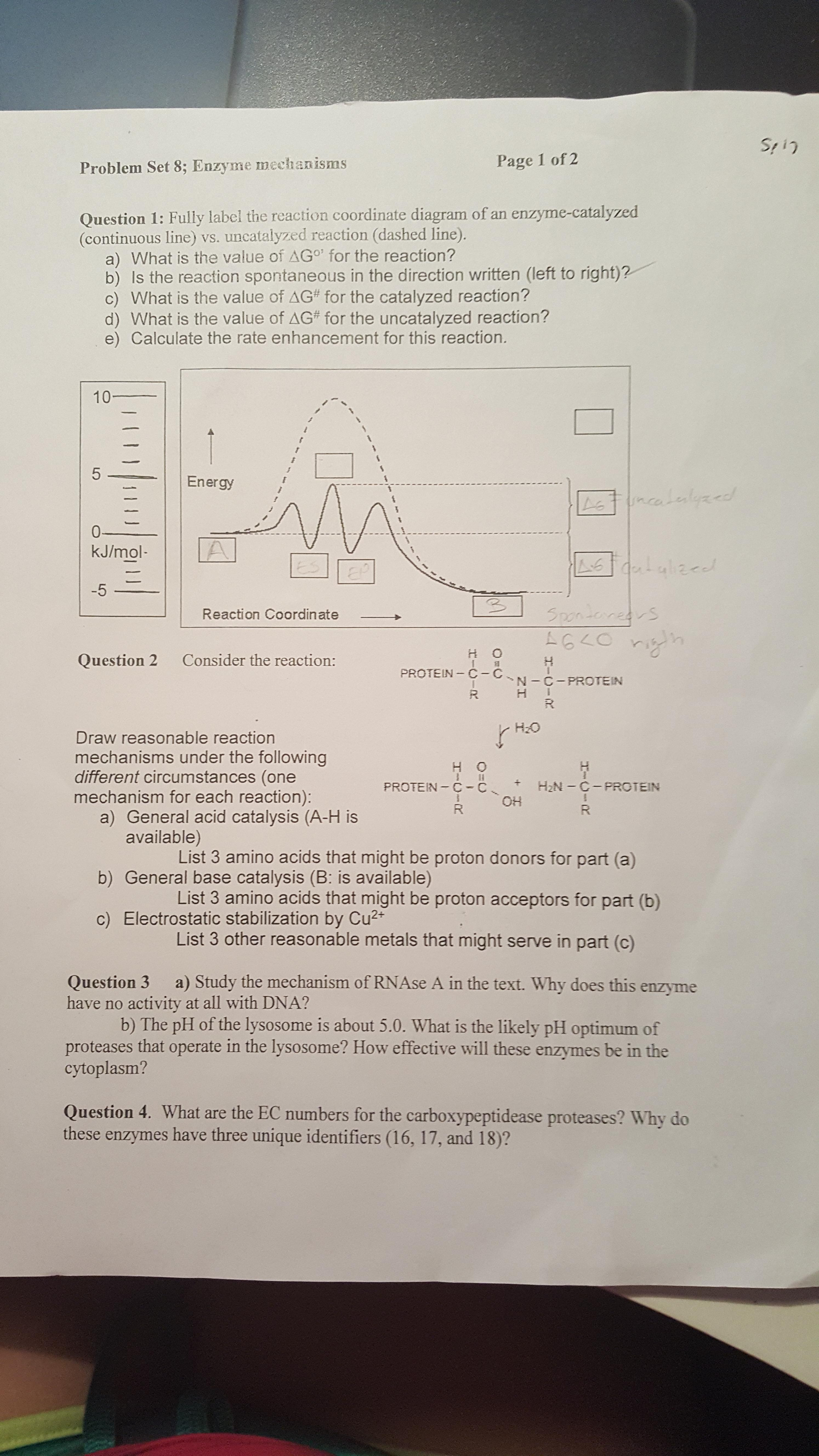 Solved: Fully Label The Reaction Coordinate Diagram Of An ...