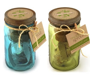 Modern Sprout Garden Jars Giveaway ended - Oh My Veggies