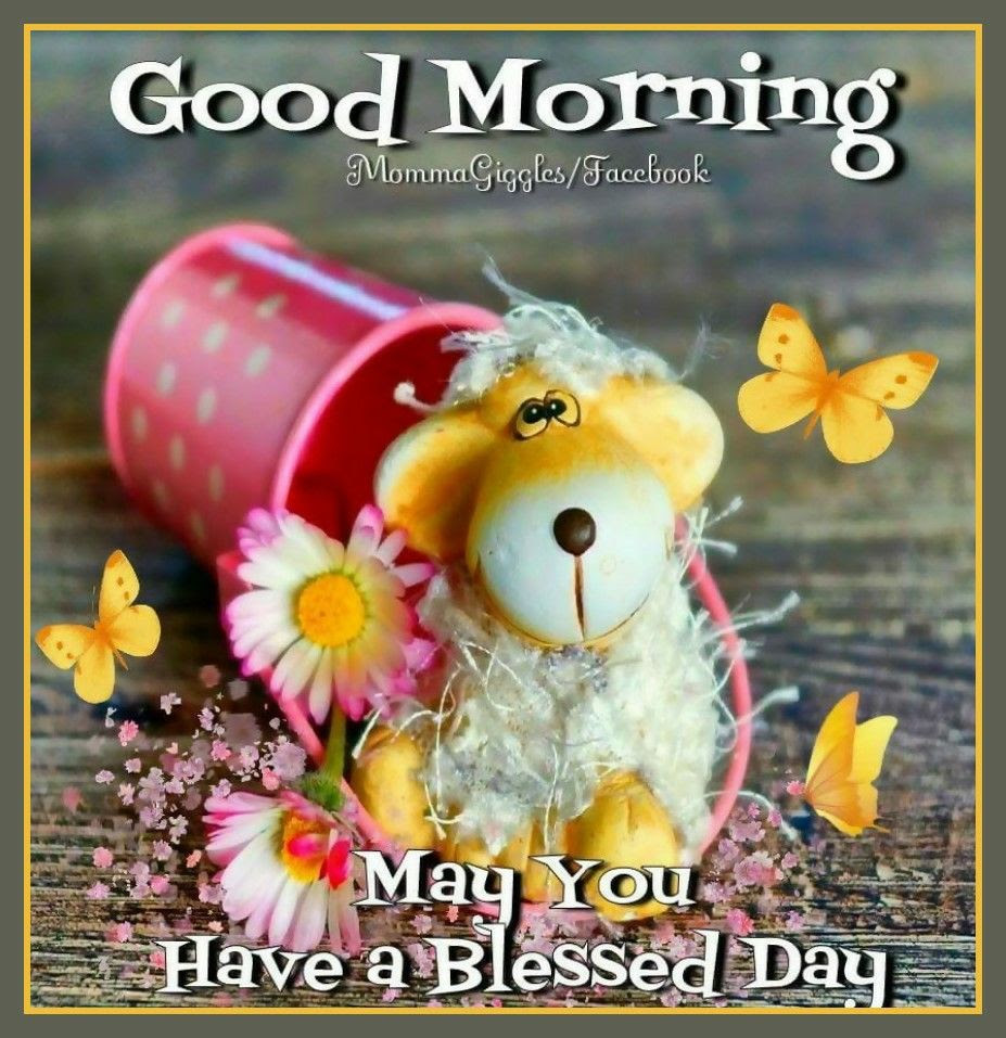 Good Morning May You Have A Blessed Day Pictures Photos And Images