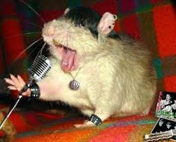 a singing mouse,that mouse