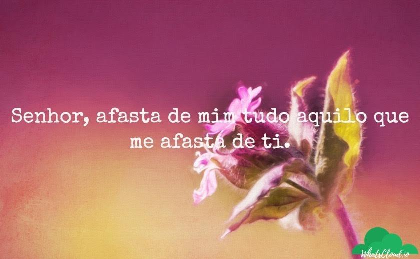 Frases E Textos Bonitos De Amor Curtas Para Facebook Status