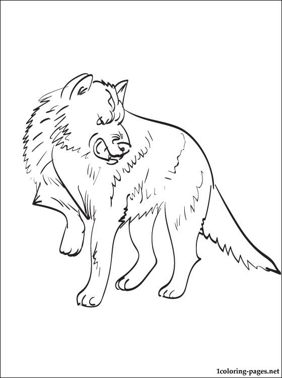 Coloring page Wolf | Coloring pages