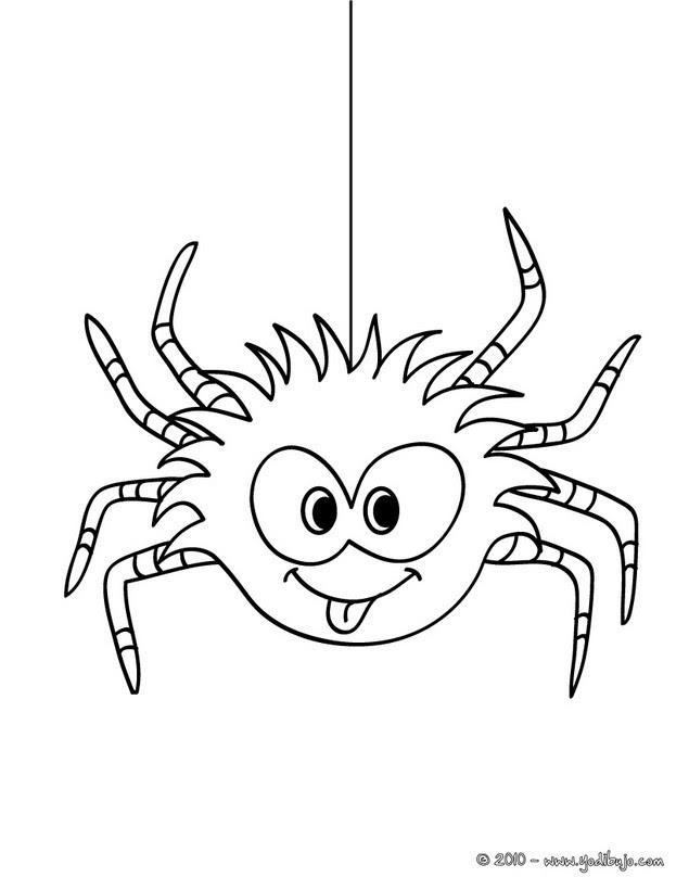Dibujos Para Colorear La Araña Eshellokidscom