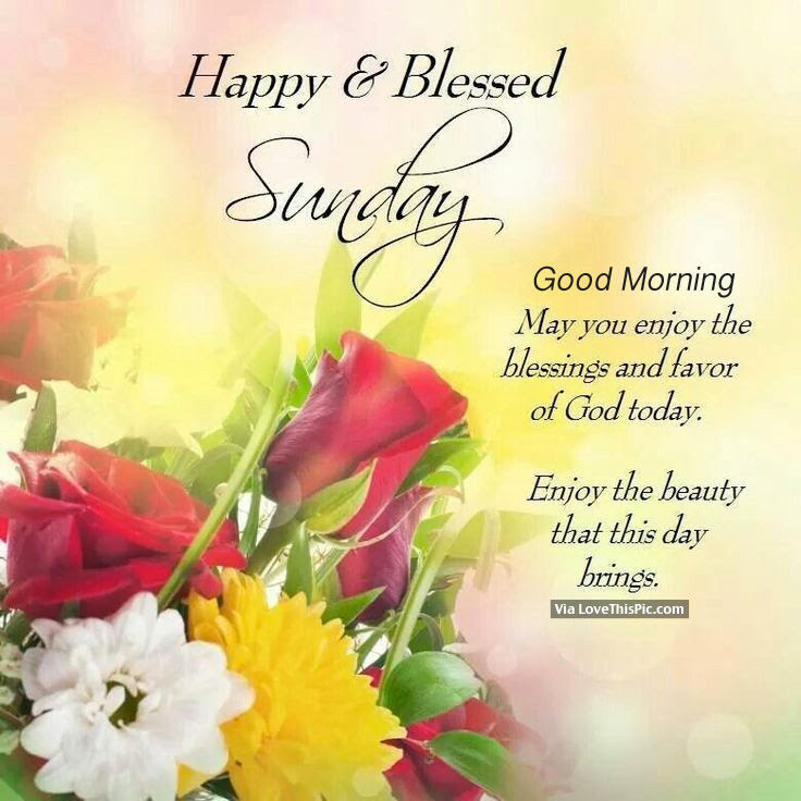 Happy Blessed Sunday Good Morning Pictures Photos And Images For