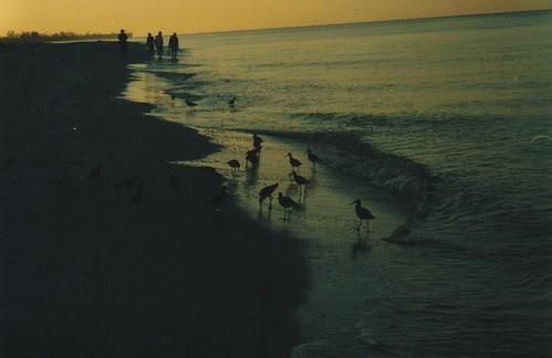 Dawn at Sanibel Island, Florida