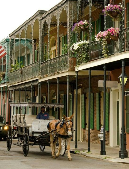 New Orleans - a couple of trips to MSY...love the town, the cable car-Garden District, old cemetary...food !!   great place!