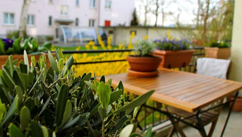Θετικά αποτελέσματα έχει το να τοποθετείτε κοντά τις γλάστρες σας ώστε τα φυτά να εκμεταλλεύονται την εξάτμιση της υγρασίας από τα διπλανά τους.