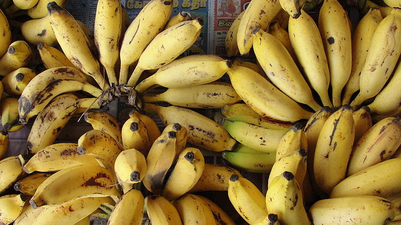 File:A Banana cluster.JPG