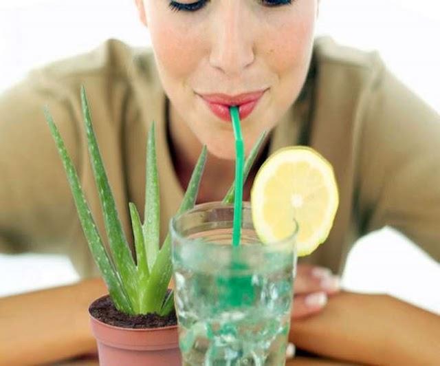 सेहत के लिए वरदान है एलोवेरा का जूस, फायदे जानकर आप भी शुरू कर देंगे पीना