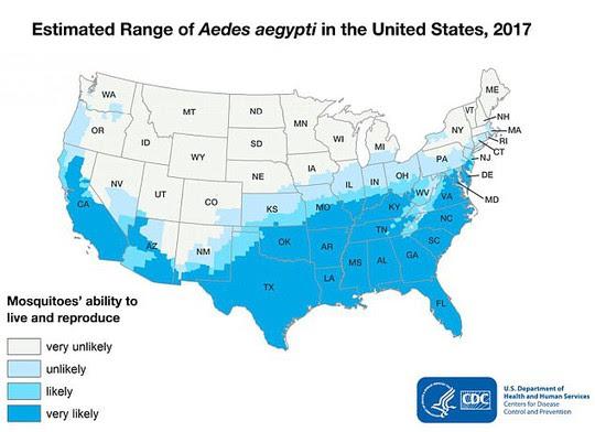 Ngành y tế Mỹ cũng đau đầu vì muỗi Aedes - Ảnh 1.