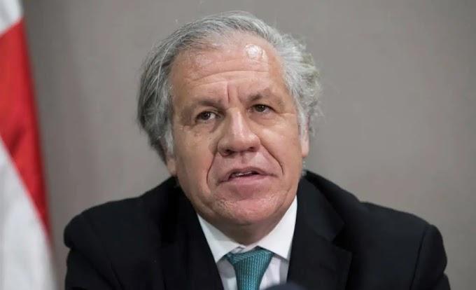"""LA OEA PIDE EL CESE DE LA """"REPRESIÓN Y LA PERSECUCIÓN"""" EN CUBA"""