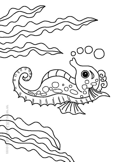 sea animal coloring pages    print