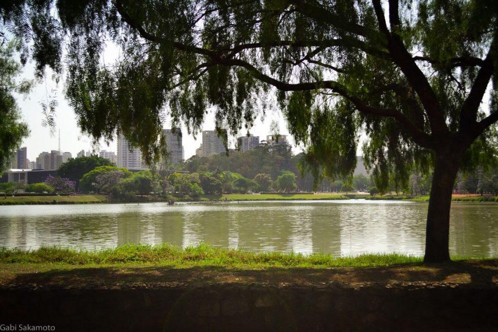 O Parque do Ibirapuera é um dos parques municipais que ficará sob a gestão da iniciativa privada. Foto: Gabriela Sakamoto/Flickr.
