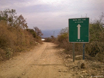 Camino a La Higuera. Foto: Lautaro Actis.