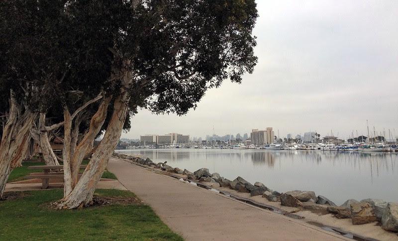 Last morning run along the harbor