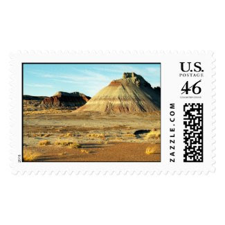 Petrified Forest Desert – Large stamp stamp