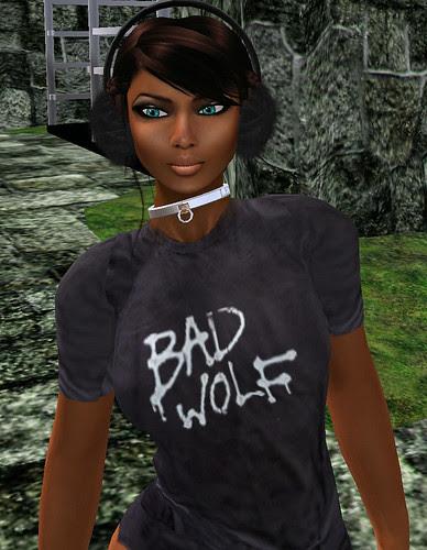 Chimney Hunt 27 Meu and Ska Shack - Doctor Who Bad Wolf long