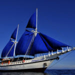 The comfortable S/Y Philippine Siren offers a stylish way for divers to visit sites all over the country. There are a variety of itineraries — we chose the Visayas, including Dauin and Apo Island.