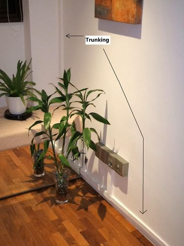 Trunks Route in Guest Room