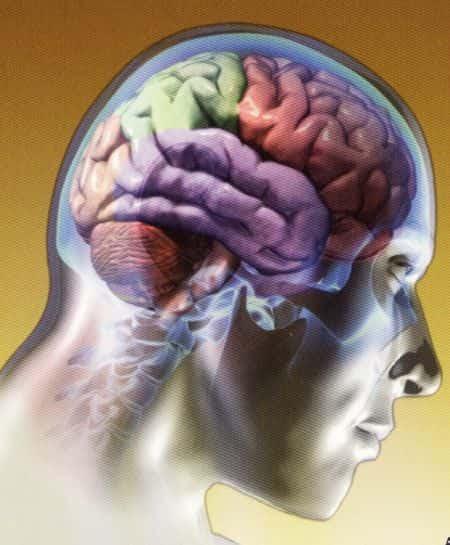 Resultado de imagem para cérebros humanos poderiam ser haqueados fotos