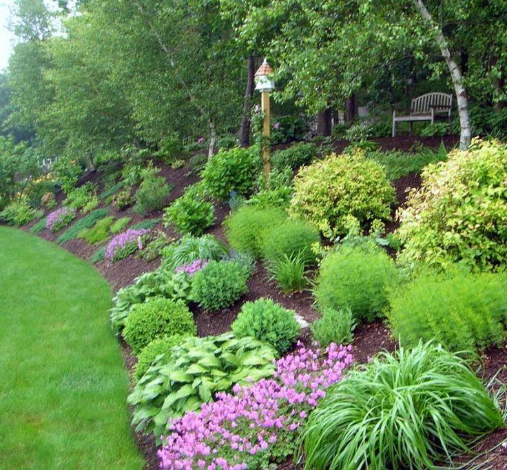 Back Yard Hill Landscaping Idea
