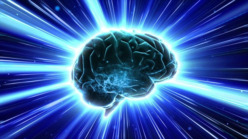 Scoperto che il cervello pi complesso del previsto e for 2 1 2 dimensioni del garage