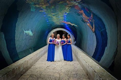 Dallas Aquarium Wedding