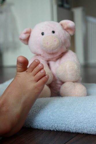 loving piggy and di-e