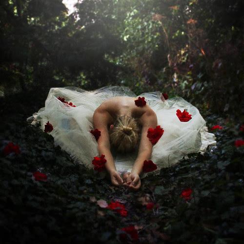 The Dancer's Garden by rosiekernohan