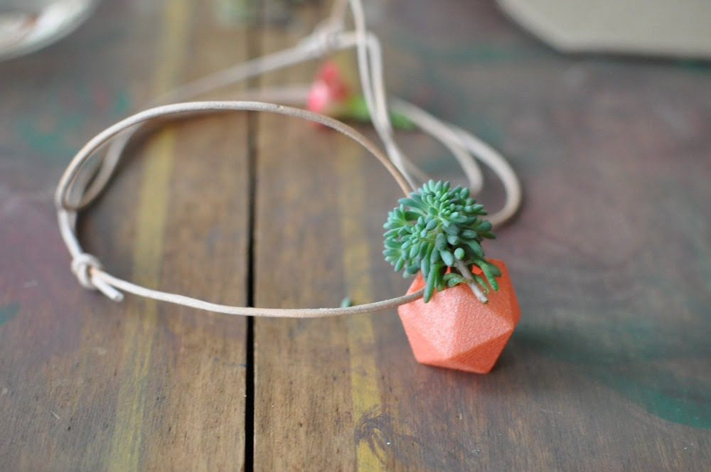 Miniature Icosahedron in Coral: A Wearable Planter