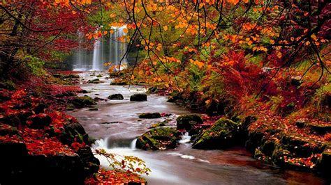 fall wallpaper  desktop   images