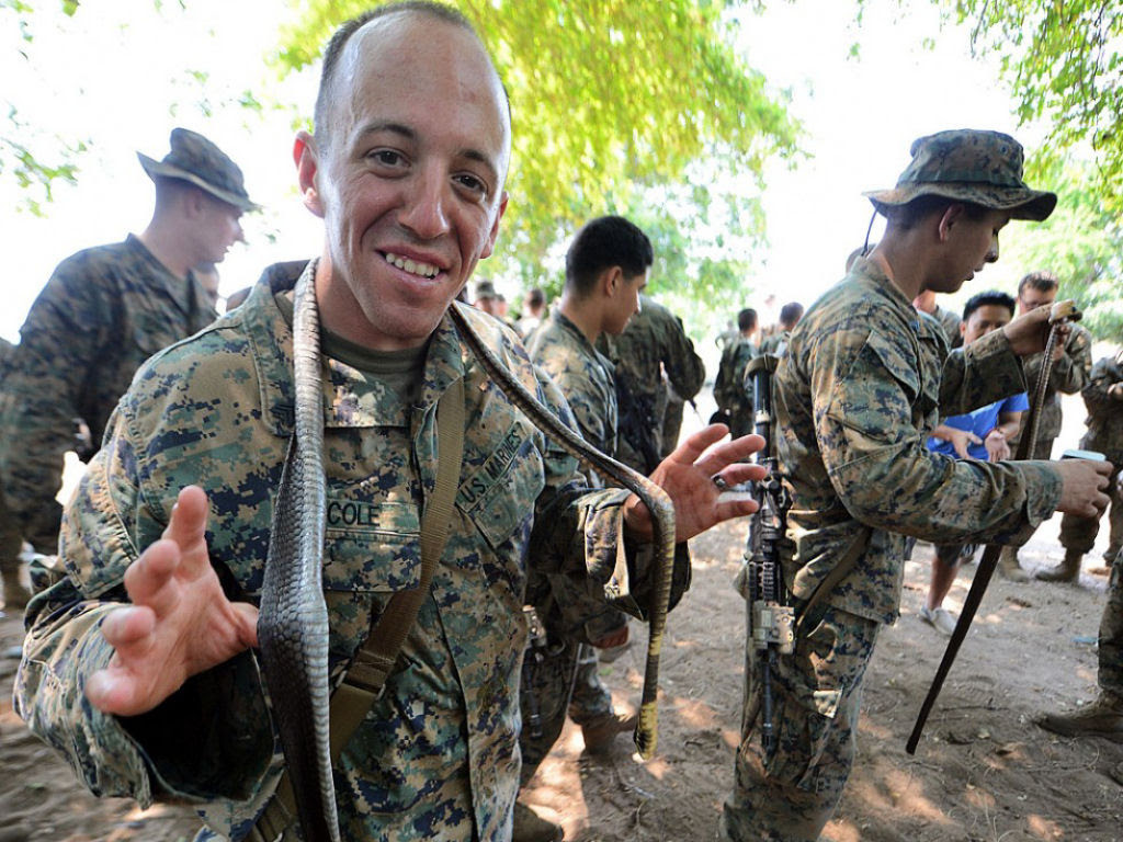 Cobra Gold 2013 - Militares sobrevivem com sangue de cobra na selva tailandesa 16