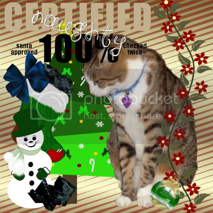 Tabby Cat,Snowman,Domestic Cat,Sir Tristan,Happy Holidays,Christmas