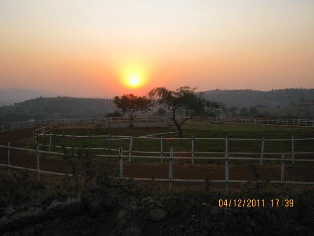 Horse Riding - Visit to Paranjape Schemes' Forest Trails, Bungalows, 2 BHK & 3 BHK Flats at Bhugaon, Pune 411 042
