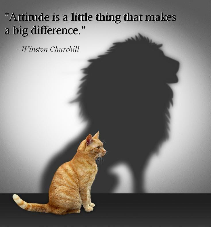 Bildergebnis für Attitude is a little thing