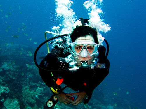 3665462673 b0bf12fa39 Myth Buster: 5 Beginner Scuba Diving Misconceptions Dispelled