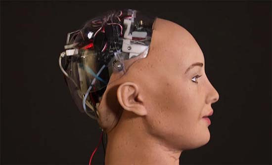 Sophia robot amenaza destruir humanidad