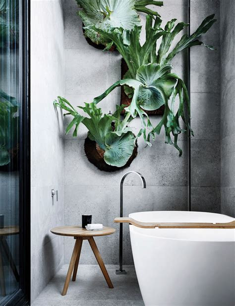 bathroom ideas  tips   experts   nature