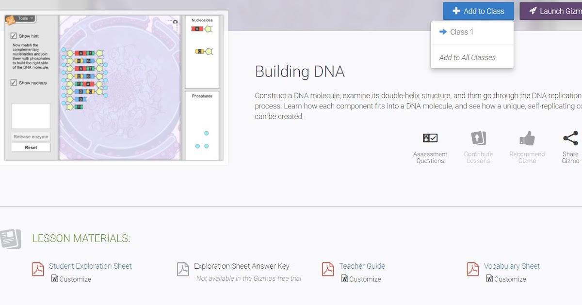 Building Dna Gizmo Answers Key Pdf - Building Dna Gizmo ...
