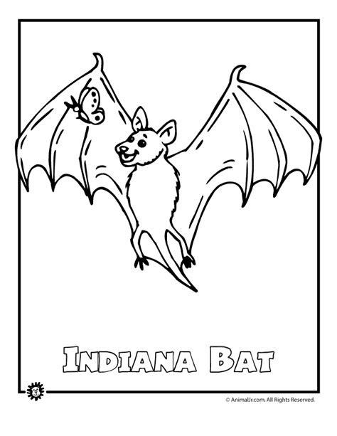 bat endangered animal coloring page woo jr kids activities