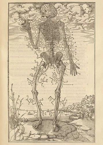 Charles Estienne(1504-ca. 1564)