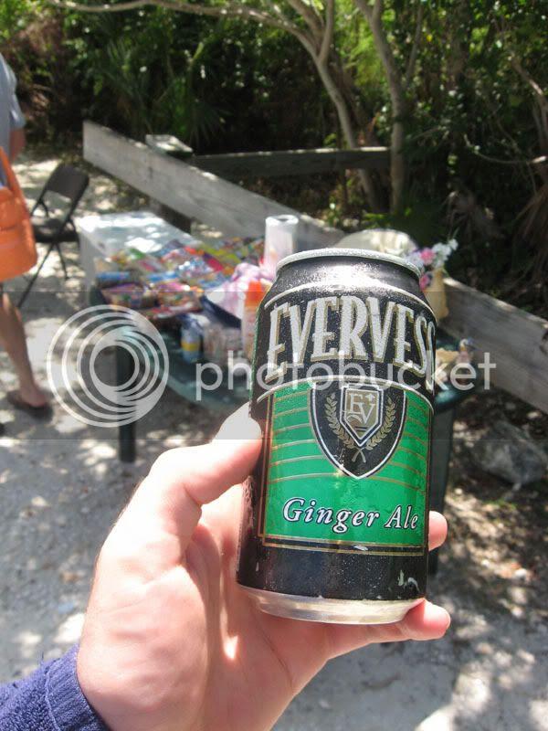 Evervest Ginger Ale