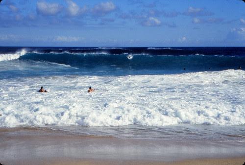 IMG_00647_Surfers