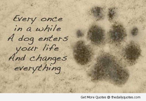 Dog Passed Away Quotes. QuotesGram